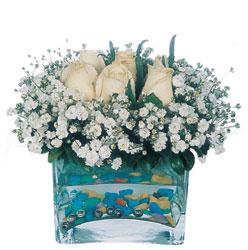 Şırnak çiçekçiler  mika yada cam içerisinde 7 adet beyaz gül