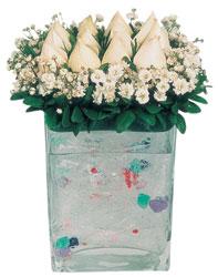 Şırnak çiçekçiler  7 adet beyaz gül cam yada mika vazo tanzim