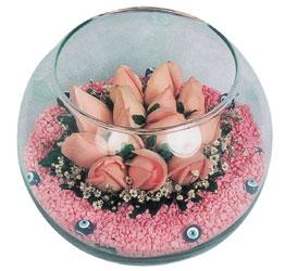 Şırnak çiçek siparişi vermek  cam fanus içerisinde 10 adet gül