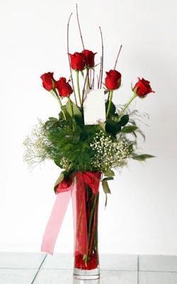 Şırnak anneler günü çiçek yolla  6 adet kirmizi gül ve cam yada mika vazo
