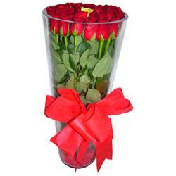 Şırnak kaliteli taze ve ucuz çiçekler  12 adet kirmizi gül cam yada mika vazo tanzim