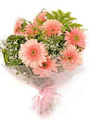 Şırnak hediye çiçek yolla  11 adet gerbera çiçegi buketi