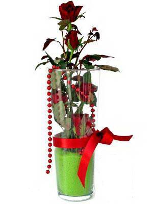 Şırnak uluslararası çiçek gönderme  Cam yada mika içerisinde 9 adet kirmizi gül - sevdiklerinize özel