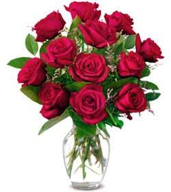 Şırnak uluslararası çiçek gönderme  1 düzine kirmizi gül sevenlere özel vazo gülleri