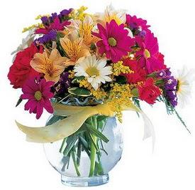 Şırnak çiçek siparişi vermek  cam yada mika içerisinde karisik mevsim çiçekleri