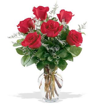 Şırnak anneler günü çiçek yolla  cam yada mika vazoda 6 adet kirmizi gül