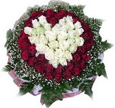 Şırnak yurtiçi ve yurtdışı çiçek siparişi  27 adet kirmizi ve beyaz gül sepet içinde