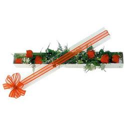 Şırnak internetten çiçek siparişi  6 adet kirmizi gül kutu içerisinde