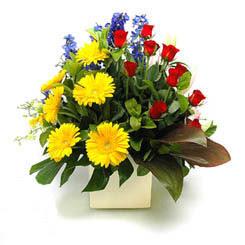 Şırnak uluslararası çiçek gönderme  9 adet gül ve kir çiçekleri cam yada mika vazoda