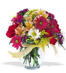 Şırnak çiçekçi mağazası  cam yada mika vazo içerisinde karisik kir çiçekleri