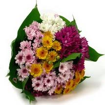 Şırnak ucuz çiçek gönder  Karisik kir çiçekleri demeti herkeze