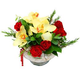 Şırnak çiçek , çiçekçi , çiçekçilik  1 adet orkide 5 adet gül cam yada mikada