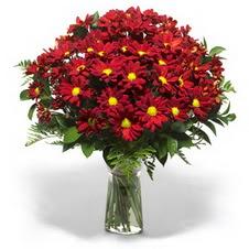 Şırnak çiçek satışı  Kir çiçekleri cam yada mika vazo içinde