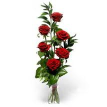 Şırnak internetten çiçek siparişi  cam yada mika vazo içerisinde 6 adet kirmizi gül