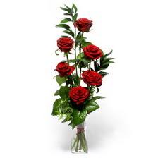 Şırnak hediye sevgilime hediye çiçek  mika yada cam vazoda 6 adet essiz gül
