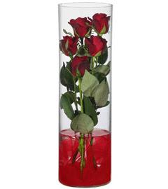 cam içerisinde 7 adet kirmizi gül  Şırnak online çiçek gönderme sipariş