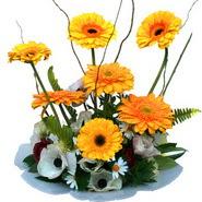 camda gerbera ve mis kokulu kir çiçekleri  Şırnak ucuz çiçek gönder