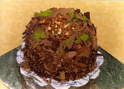 Çikolatali 4 ila 6 kisilik yas pasta  Şırnak çiçekçi telefonları