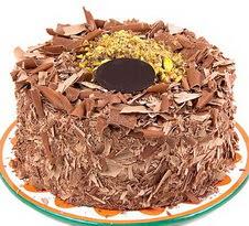 çikolatali 4 ile 6 kisilik yas pasta  Şırnak güvenli kaliteli hızlı çiçek
