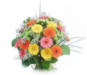 13 adet gerbera çiçegi buketi  Şırnak uluslararası çiçek gönderme