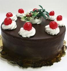 4 ile 6 kisilik yas pasta çikolatali taze pastaci  Şırnak çiçek servisi , çiçekçi adresleri
