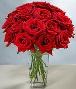 Şırnak internetten çiçek siparişi  Sevdiklerinize özel ürün 12 adet cam içerisinde kirmizi gül  Şırnak internetten çiçek satışı