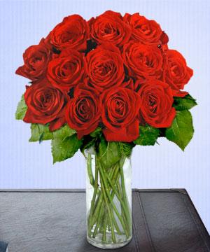 Anneme 12 adet cam içerisinde kirmizi gül  Şırnak internetten çiçek siparişi