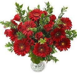 5 adet kirmizi gül 5 adet gerbera aranjmani  Şırnak internetten çiçek satışı