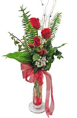 Çiçek gönderin cam vazoda 3 gül çiçekleri  Şırnak internetten çiçek siparişi