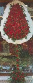 Şırnak çiçekçi telefonları  dügün açilis çiçekleri  Şırnak İnternetten çiçek siparişi