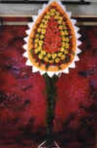 Şırnak hediye çiçek yolla  dügün açilis çiçekleri  Şırnak çiçekçi mağazası
