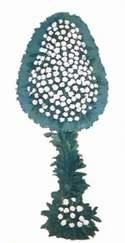 Şırnak uluslararası çiçek gönderme  dügün açilis çiçekleri  Şırnak çiçek yolla , çiçek gönder , çiçekçi