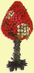 Şırnak çiçek , çiçekçi , çiçekçilik  dügün açilis çiçekleri  Şırnak kaliteli taze ve ucuz çiçekler