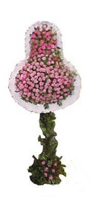 Şırnak çiçek siparişi sitesi  dügün açilis çiçekleri  Şırnak cicek , cicekci