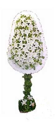 Şırnak internetten çiçek siparişi  nikah , dügün , açilis çiçek modeli  Şırnak uluslararası çiçek gönderme