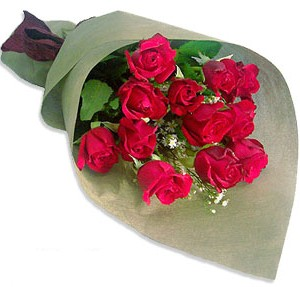 Uluslararasi çiçek firmasi 11 adet gül yolla  Şırnak yurtiçi ve yurtdışı çiçek siparişi