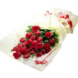 Çiçek gönderme 13 adet kirmizi gül buketi  Şırnak hediye çiçek yolla