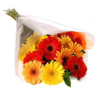 Karisik renklerde gerbera buketi  Şırnak anneler günü çiçek yolla