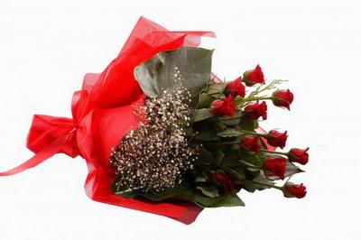 Şırnak internetten çiçek siparişi  11 adet kirmizi gül buketi çiçekçi