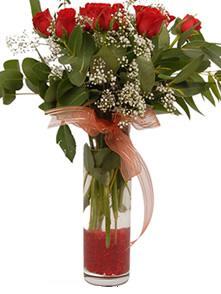 Şırnak hediye sevgilime hediye çiçek  11 adet kirmizi gül vazo çiçegi
