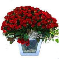 Şırnak online çiçek gönderme sipariş   101 adet kirmizi gül aranjmani