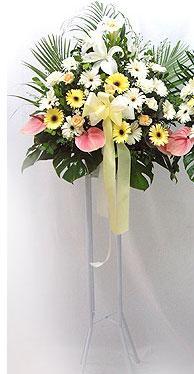Şırnak uluslararası çiçek gönderme   perförje çiçegi dügün çiçekleri