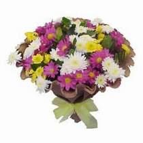 Şırnak ucuz çiçek gönder  Mevsim kir çiçegi demeti