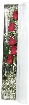 Şırnak internetten çiçek siparişi   5 adet gülden kutu güller