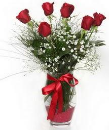 7 adet gülden cam içerisinde güller  Şırnak çiçek online çiçek siparişi