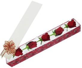 Şırnak çiçek siparişi vermek  kutu içerisinde 5 adet kirmizi gül
