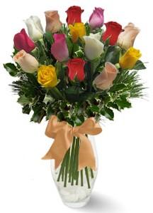 15 adet vazoda renkli gül  Şırnak çiçek siparişi vermek