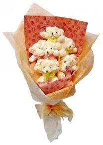 12 adet ayiciktan buket  Şırnak internetten çiçek siparişi