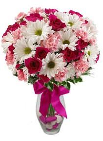 Şırnak internetten çiçek siparişi  Karisik mevsim kir çiçegi vazosu