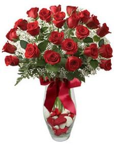 17 adet essiz kalitede kirmizi gül  Şırnak yurtiçi ve yurtdışı çiçek siparişi